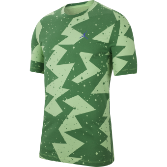 JORDAN PRINTED POOLSIDE CREW TEE GREEN STRIKE